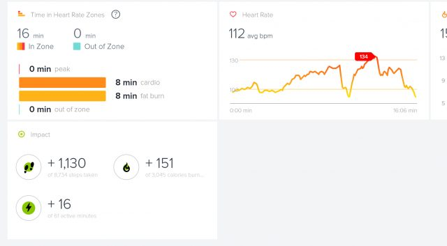 Sample FitBit output