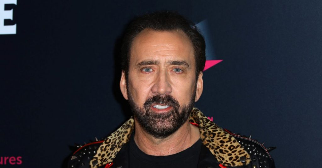 Nicolas Cage is playing Joe Unique in a new Tiger King TELEVISION display, in fact