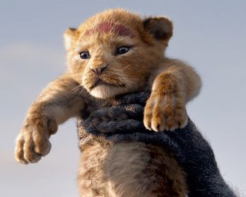 Moonlight director Barry Jenkins is helming the next live-action Lion King