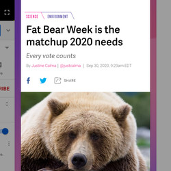 """<em>On the gesture navigation home page, swipe up for your multitasking pane</em>"""" /> On the gesture navigation home page, swipe up for your multitasking pane <img src="""
